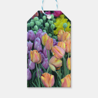 Bunch of colorful tulips pack of gift tags