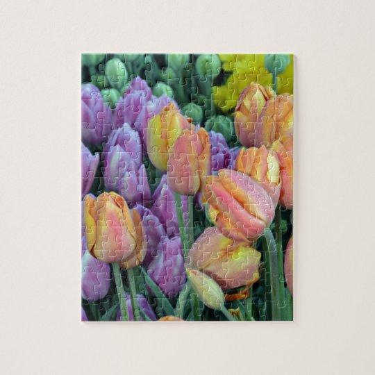 Bunch of colorful tulips puzzle