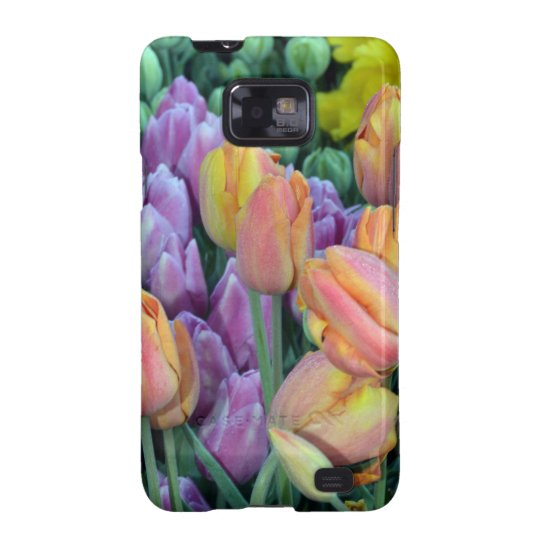 Bunch of colorful tulips samsung galaxy s2 covers