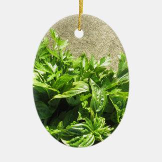 Bunch of fresh herbs ceramic oval ornament