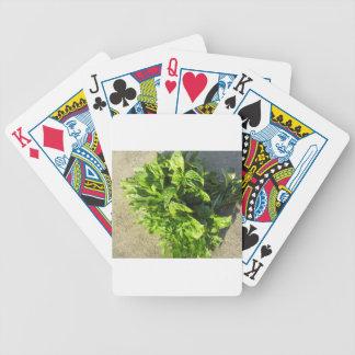 Bunch of fresh herbs poker deck