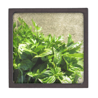 Bunch of fresh herbs premium gift boxes