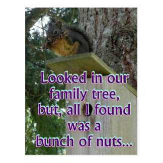 bunch of nuts postcard