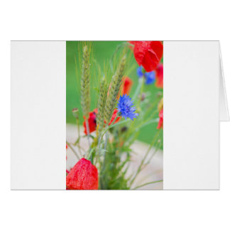 Bunch of of red poppies, cornflowers and ears card