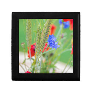 Bunch of of red poppies, cornflowers and ears gift box