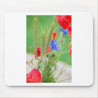 Bunch of of red poppies, cornflowers and ears mouse pad