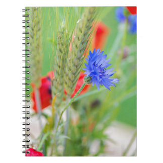Bunch of of red poppies, cornflowers and ears spiral notebook