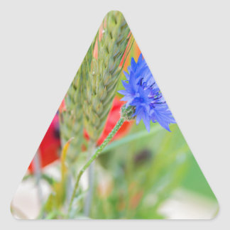 Bunch of of red poppies, cornflowers and ears triangle sticker