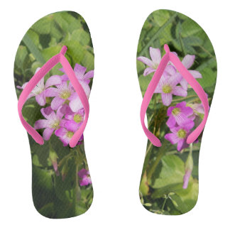 Bunch of pretty pink spring flowers on flip flops