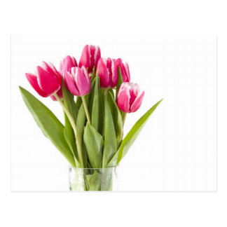 Bunch of red and white tulips in glass vase postcard