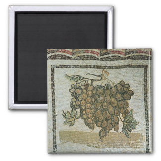 Bunch of white grapes, Roman mosaic Magnet