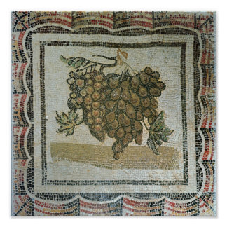 Bunch of white grapes, Roman mosaic Poster