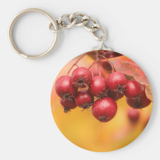 Bunches o' Berries keychain