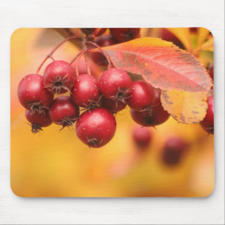 Bunches o' Berries mousepad