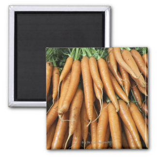 Bunches of carrots, full frame magnet