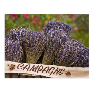 Bunches of lavender for sale, Vence, Provence, Postcard