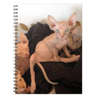 bundles of love notebooks