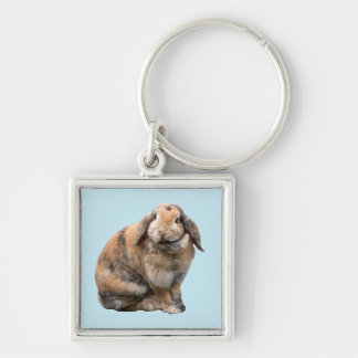 Bunnie rabbit lop-eared keychain, gift idea keychain
