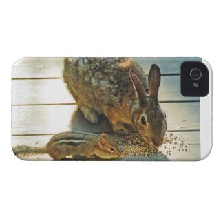 Bunny and Chipmunk Sharing Case-Mate iPhone 4 Cases