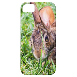 Bunny iPhone 5 Cases