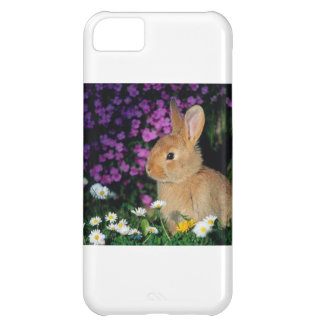 Bunny iPhone 5C Cases