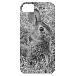 Bunny! Case For The iPhone 5