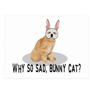 Bunny Cat Sad Postcard