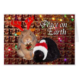 Bunny Christmas Card 8