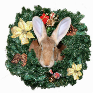 Bunny Christmas ornament Photo Sculpture Ornament