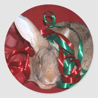 Bunny Christmas party Classic Round Sticker