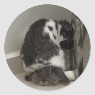 Bunny disapproval (sticker) classic round sticker