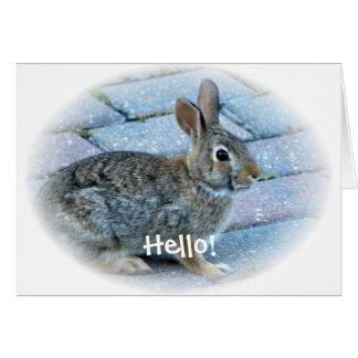 Bunny Greeting Card by Elaine