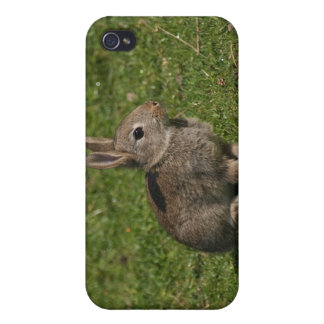 Bunny iPhone 4 Cover