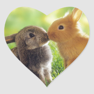 Bunny Kiss Heart Sticker