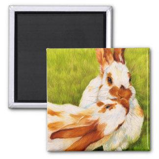 Bunny Kisses Rabbit Magnet