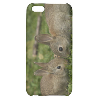 Bunny Love Case For iPhone 5C