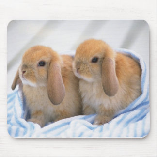 bunny mouse pad 14
