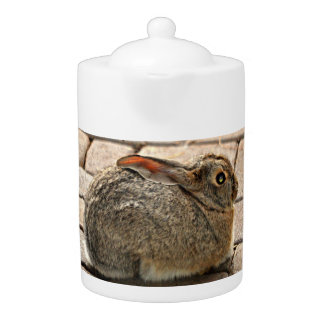 Bunny On Pavers Tea Pot
