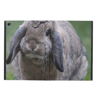 bunny powis iPad air 2 case