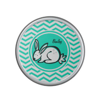 Bunny Rabbit Aqua Green Chevron Speaker