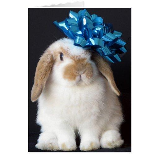Bunny Rabbit Birthday Greeting Card