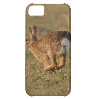 Bunny Rabbit iPhone 5C Case