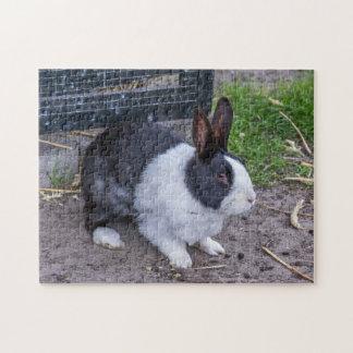 Bunny rabbit photo puzzle