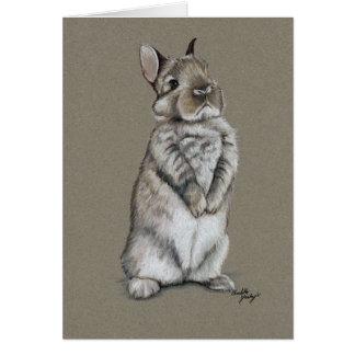 Bunny Rabbit Sitting Art Greeting Card