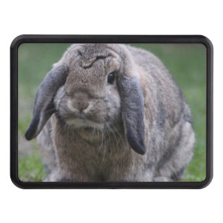 bunny trailer hitch cover