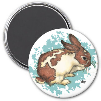 Bunny washing his face with blue 3 inch round magnet