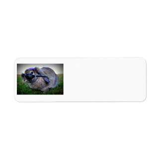 Bunny with Sunglasses / Return Address Avery Label Return Address Label