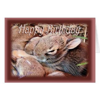 BunnyHBD-customize Card