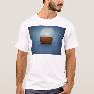 Buoy in icy water T-Shirt
