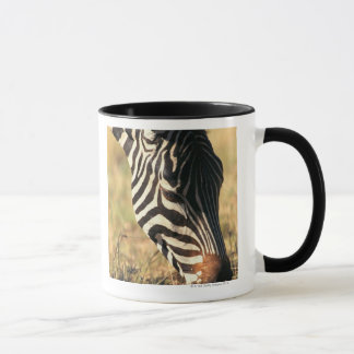 Burchell's zebra mug